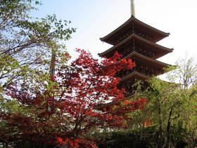 Sortides Àmbit Viatges al JAPÓ